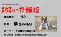 hana2-card[1].jpeg